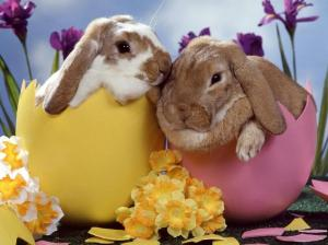 easter_wallpaper-4802
