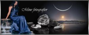 fotoheader2