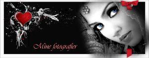 fotoheader5