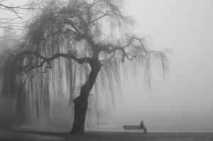 Ensomhet-alene
