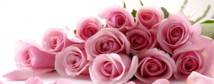 cropped-flowers-334.jpg
